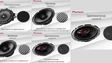 Pioneer Russia