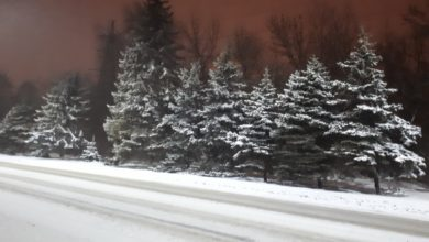 погода, дорога, снег