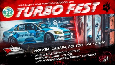 В Ростове пройдет Turbo Fest в поддержку животных