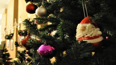 С 21 декабря по5 января ростовчан приглашают на семейный новогодний мюзикл